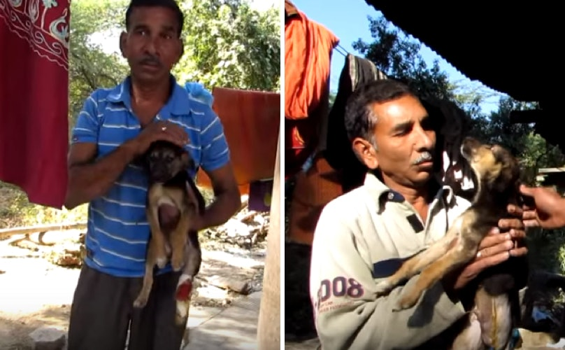 Related: Reunion Between Man And Puppy Has A Surprise Twist That Will Take Your Breath Away